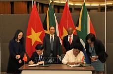 南非媒体:南非和越南应继续推动两国贸易关系务实发展