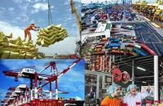 越南着力完成2019年经济增长目标