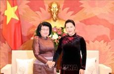 越南国会将同柬埔寨国会携手共促两国政府和人民的合作