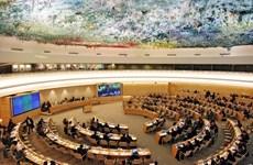 越南为联合国人权理事会第40次会议作出积极贡献