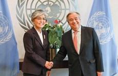 联合国与东盟支持推动朝鲜半岛无核化进程