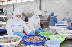 促进越南农产品对中国市场的正贸出口