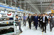 越南国会副主席冯国显视察海防市沥县国际港口和参观VinFast生产厂