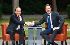 着力将越南与荷兰两国关系向纵深推进
