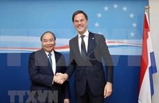 荷兰驻越南大使:荷兰首相越南之旅有助于深化在新形势下的越荷伙伴关系