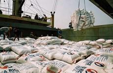 菲律宾成为越南大米第一大出口市场