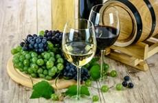 意大利葡萄酒或将进军越南市场