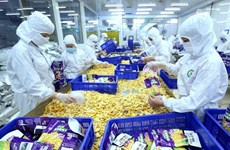 越南对罗马尼亚优势出口产品较多
