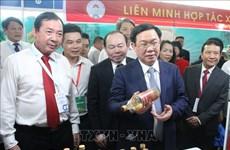2019年合作社贸易促进展销会在胡志明市开展