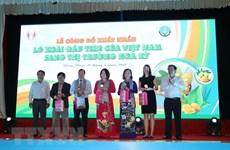 越南首批芒果出口到美国市场
