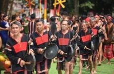 2019年越南各民族文化日正式开幕