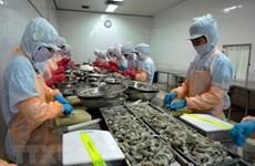 为越南虾类产品出口敞开大门