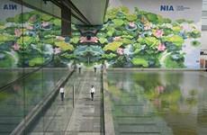 内排国际机场的莲花壁画荣获国际设计奖金牌