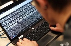 今年第一季度越南遭4700起网络攻击