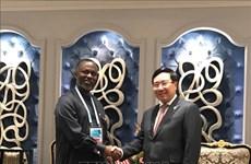 越南希望促进与非洲国家的合作