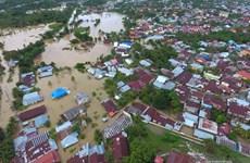 印度尼西亚明古鲁省发生严重水灾 至少18人死亡和失踪