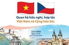 越南与捷克移交被判刑人协定获批实施