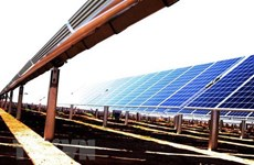 东南亚最具规模的太阳能发电厂项目将于今年6月底并网发电