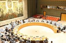越南呼吁加大训练力度和加强联合国维和力量的能力