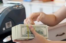 5月10日越盾兑美元中心汇率继续上调