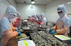 充分利用CPTPP加大虾类产品对加拿大出口力度