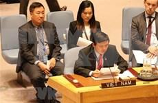 越南参加联合国安理会:维护所有国家的正当利益