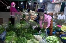 越南致力发展先进农产品供应中心体系