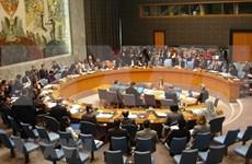 越南与联合国安理会:美国资深记者希望越南再次当选联合国安理会非常任理事国
