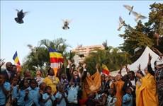 2019年佛诞节——越南与莫桑比克的文化桥梁
