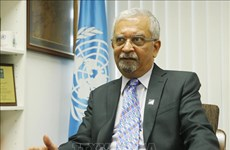 越南与联合国安理会:为地区和世界的和平发挥桥梁作用