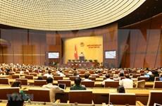越南第十四届国会第七次会议:表决通过两项决议 讨论两部法案