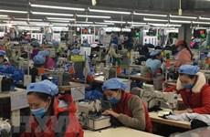 越南企业与FTA:纺织品服装全年出口总额400亿美元的目标完全可以实现