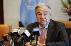 联合国秘书长强化大海和大洋可持续发展的意义