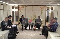 越南与印尼努力推进两国战略伙伴关系走向务实