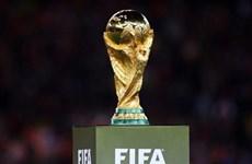 东盟10国将联合申办2034年世界杯