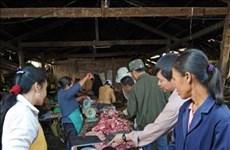 老挝首次发现非洲猪瘟疫情