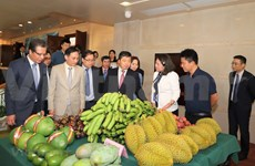 促进越南各地与中国南部地区的合作
