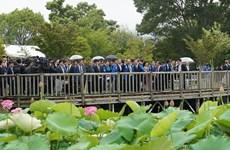 阮春福总理出席日本-越南荷花节活动