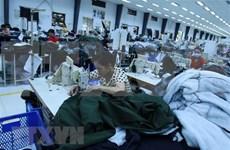 越南纺织品服装有机会扩大在加拿大的市场份额