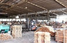 《越南与欧盟自由贸易协定》为越南木材加工业带来可持续发展机会
