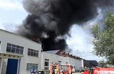 德国柏林越南人贸易中心突发火灾  消防历时5小时终扑灭