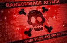 越南努力提高网络安全保障水平