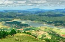 林同省浪平山上种植1000棵喜马拉雅樱桃树