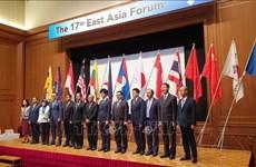 越南外交部副部长阮国勇出席第17届东亚论坛