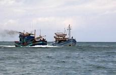 马来西亚和印度尼西亚联合打击非法捕捞行为