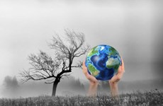 加强国际合作有效落实应对气候变化计划