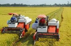 越南颁布决议  鼓励和促进企业对农业进行投资