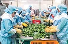 越南农产品抓住EVFTA带来的机遇
