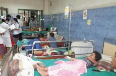 老挝扎实推进登革热防控工作