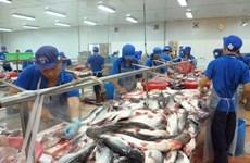 同塔省积极探索打造查鱼品牌